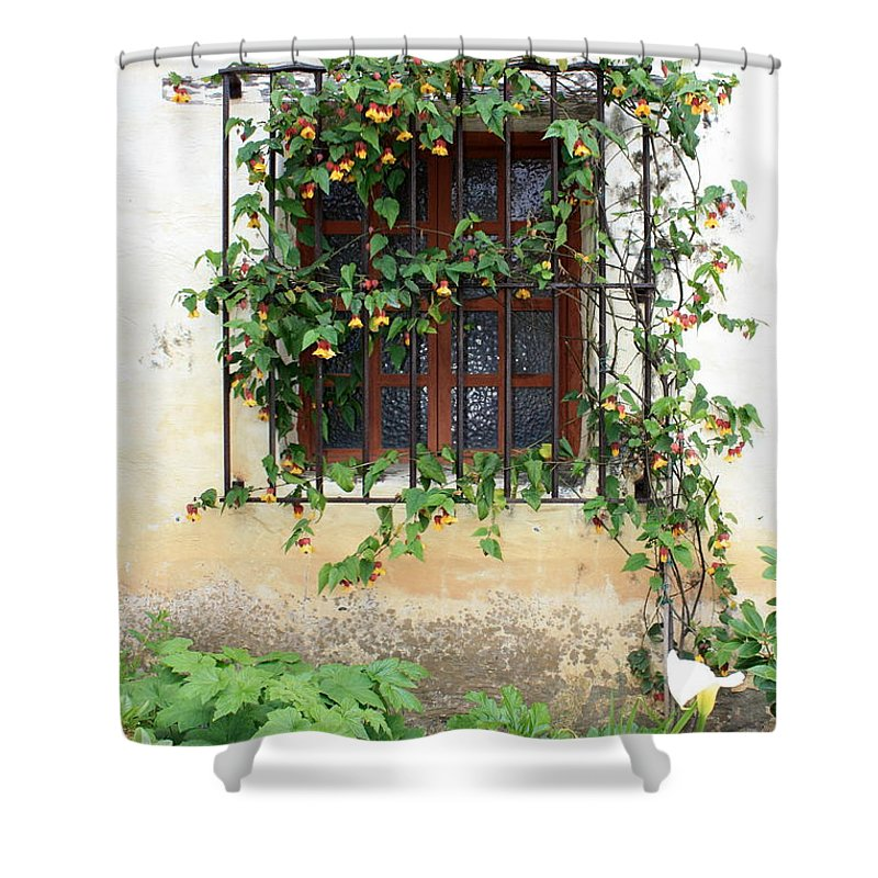 Mission Window Shower Curtain featuring the photograph Mission Window With Yellow Flowers Vertical by Carol Groenen