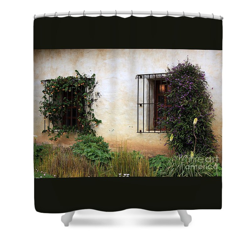 Vines Shower Curtain featuring the photograph Mission Windows by Carol Groenen