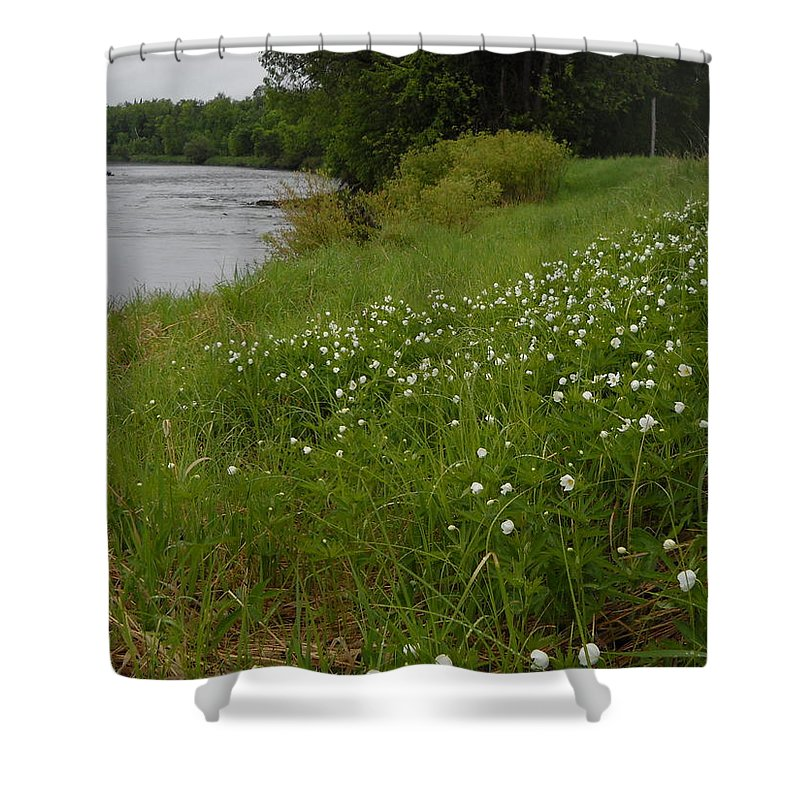 Wild Flowers Shower Curtain featuring the photograph Mississippi River Bank Flowers by Kent Lorentzen