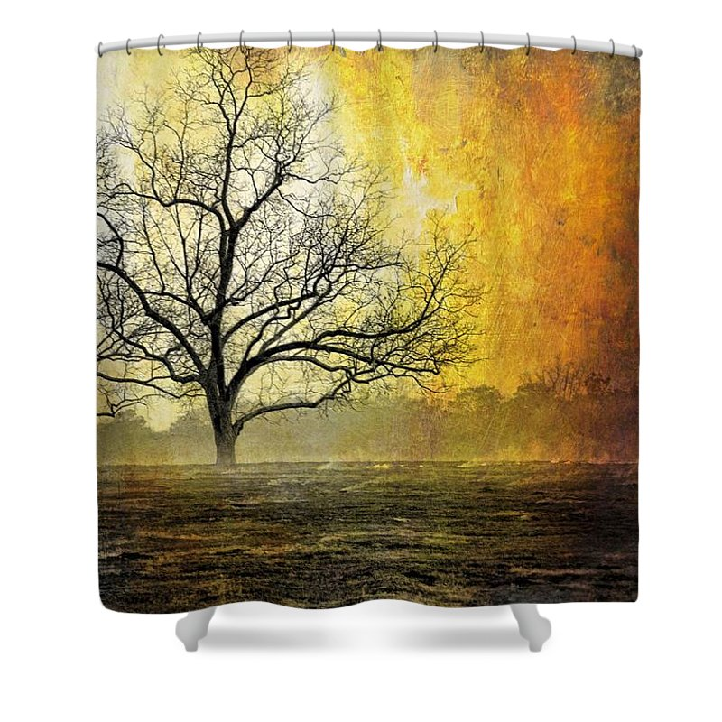 Landscapes Shower Curtain featuring the photograph Mist Of Confusion by Jan Amiss Photography