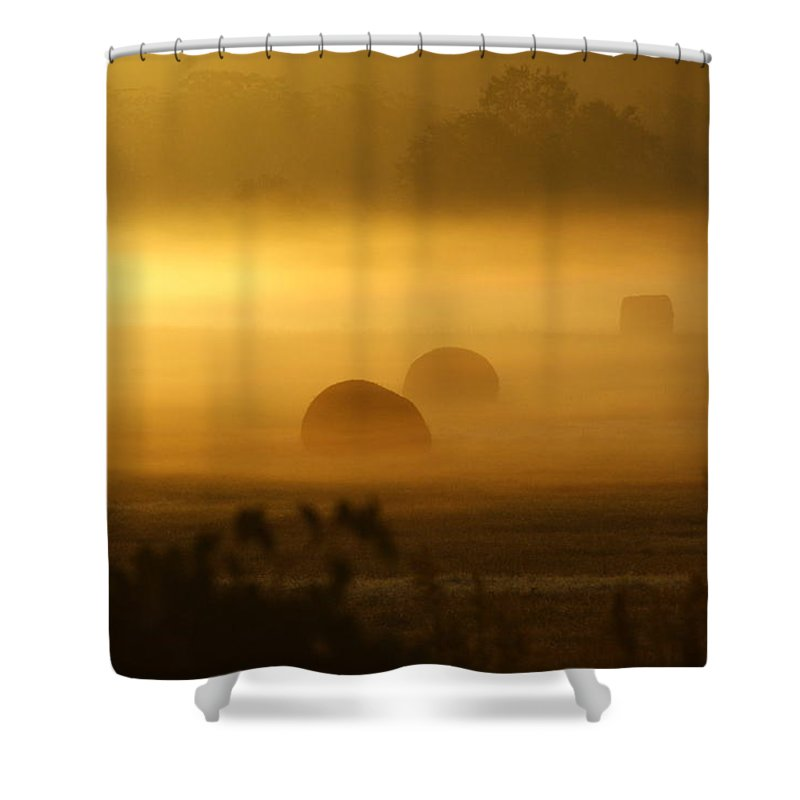 Morning Mist Shower Curtain featuring the photograph Misty Sunrise by Theresa Cangelosi
