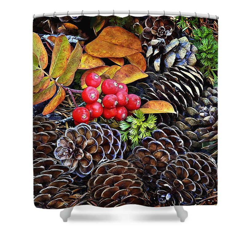 Fall Colors Shower Curtain featuring the photograph Mixed Company by John Christopher