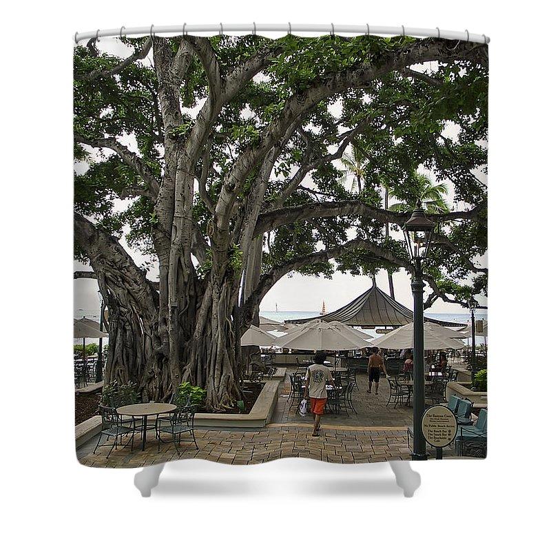 Hawaii Shower Curtain featuring the photograph Moana Surfrider Banyan Court - Waikiki Beach by Daniel Hagerman