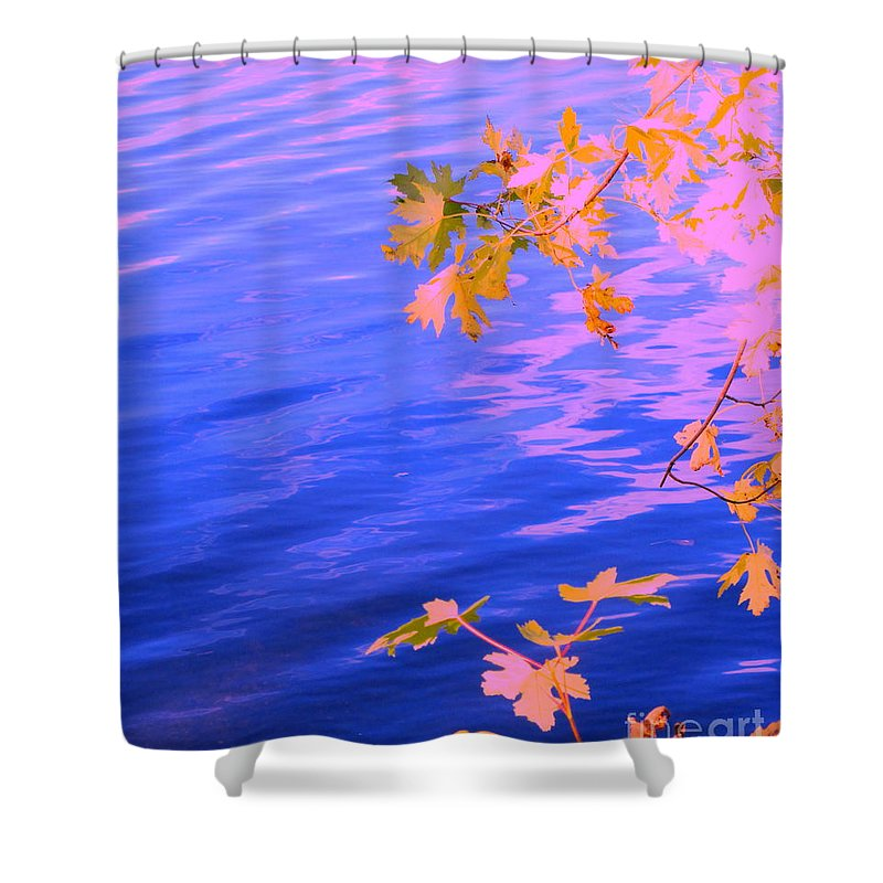 Water Shower Curtain featuring the photograph Moment Of Quiet by Sybil Staples