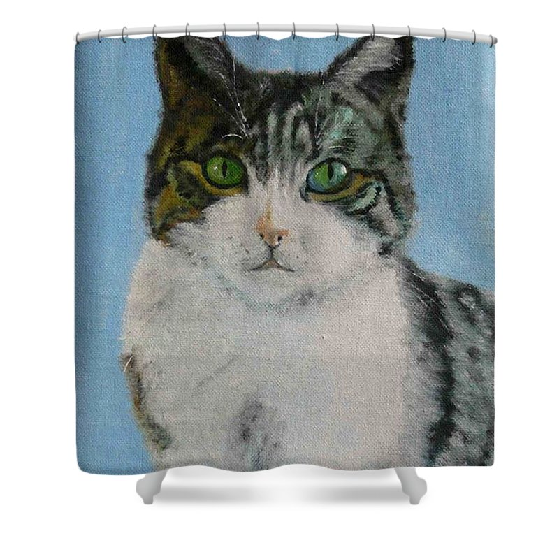 Tomcat Shower Curtain featuring the painting Momo by Helmut Rottler