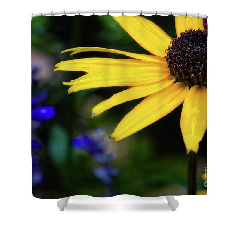 Sunflower Shower Curtain featuring the photograph Mom's Garden by Doug Sturgess