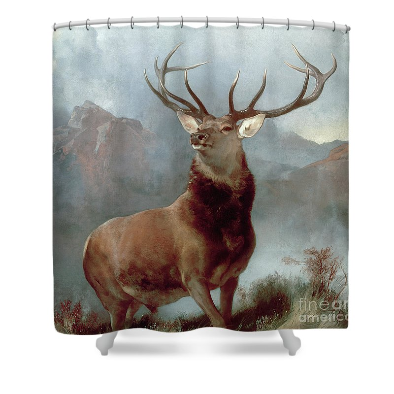 Buck Deer Paintings Shower Curtains