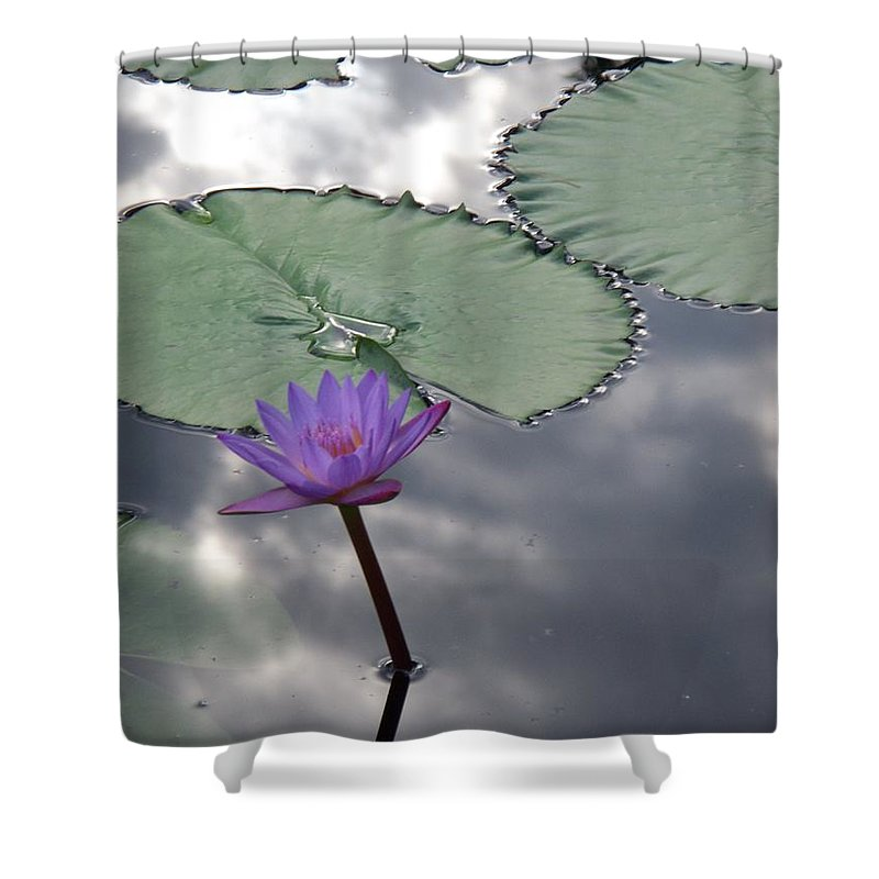 Photograph Shower Curtain featuring the photograph Monet Lily Pond Reflection by Eric Schiabor