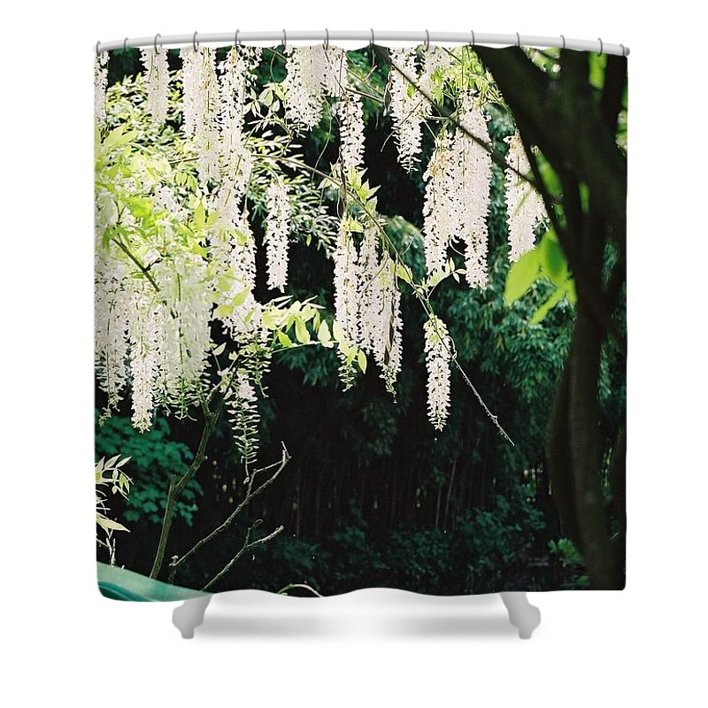 Monet Shower Curtain featuring the photograph Monet's Garden Delights by Nadine Rippelmeyer