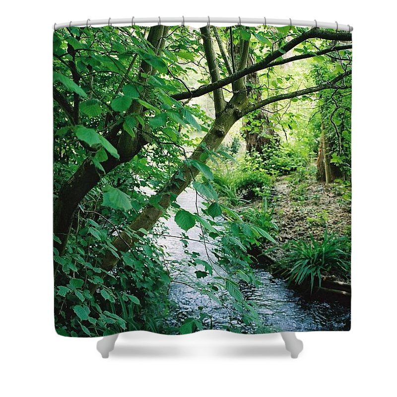 Photography Shower Curtain featuring the photograph Monet's Garden Stream by Nadine Rippelmeyer