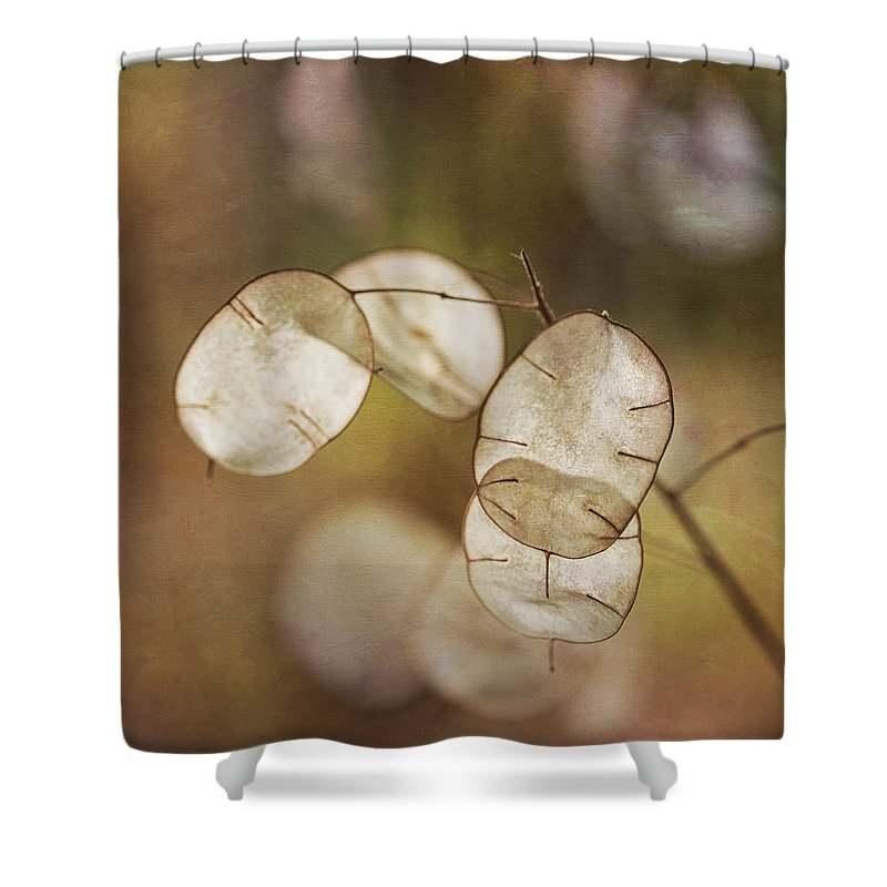Money Plant Shower Curtain featuring the photograph Money Plant by Dale Kincaid