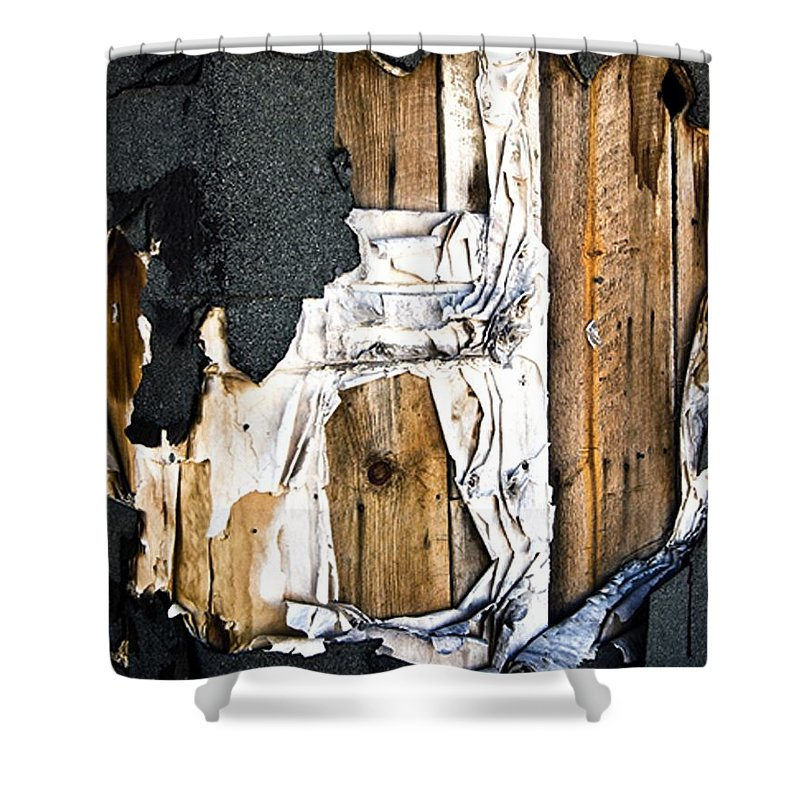 California Scenes Shower Curtain featuring the photograph Mono Hut Wall by Norman Andrus