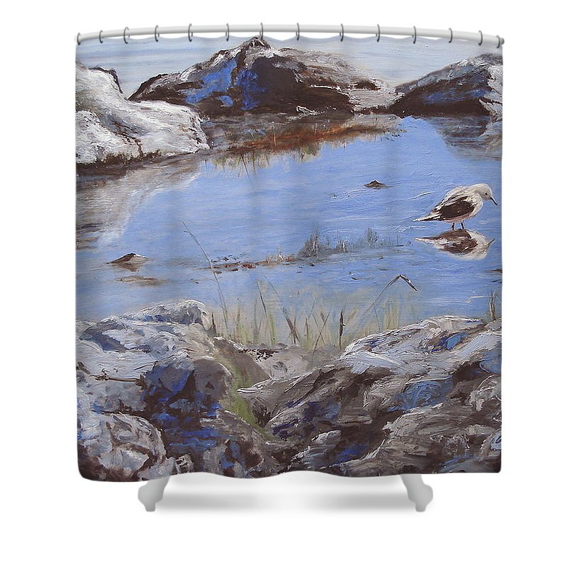 Animal Shower Curtain featuring the painting Mono Lake by Barbara Andolsek