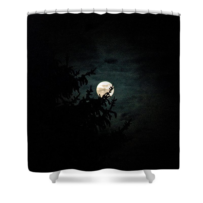Shower Curtain featuring the photograph Moonlight by Carol Eliassen
