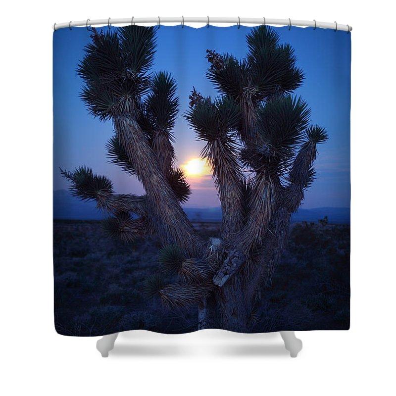 Robert Melvin Shower Curtain featuring the photograph Moonlight Joshua by Robert Melvin