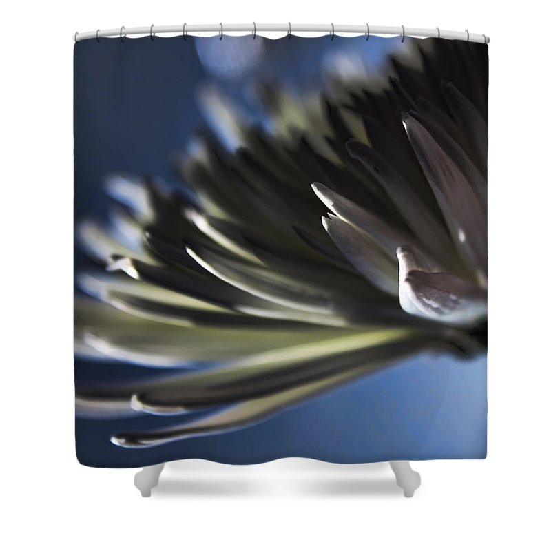 Macro Shower Curtain featuring the photograph Moonlit by Lauren Radke