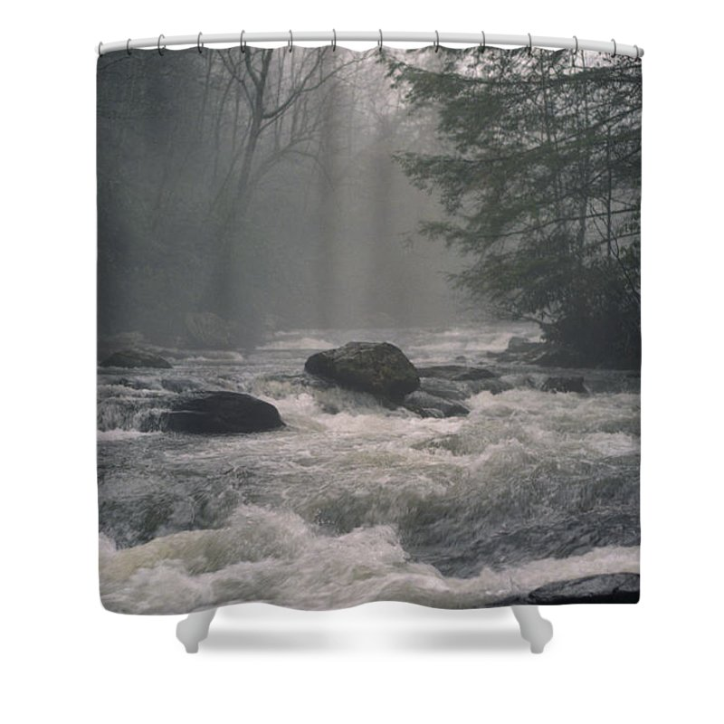 Rivers Shower Curtain featuring the photograph Morning At The River by Richard Rizzo