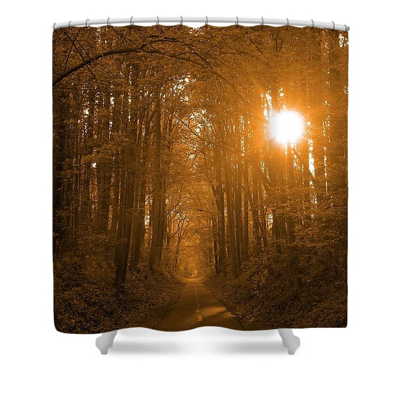 Sunrise Shower Curtain featuring the photograph Morning Awaits by Mitch Cat