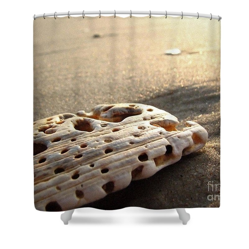 Landscape Shower Curtain featuring the photograph Morning Glow by Todd A Blanchard
