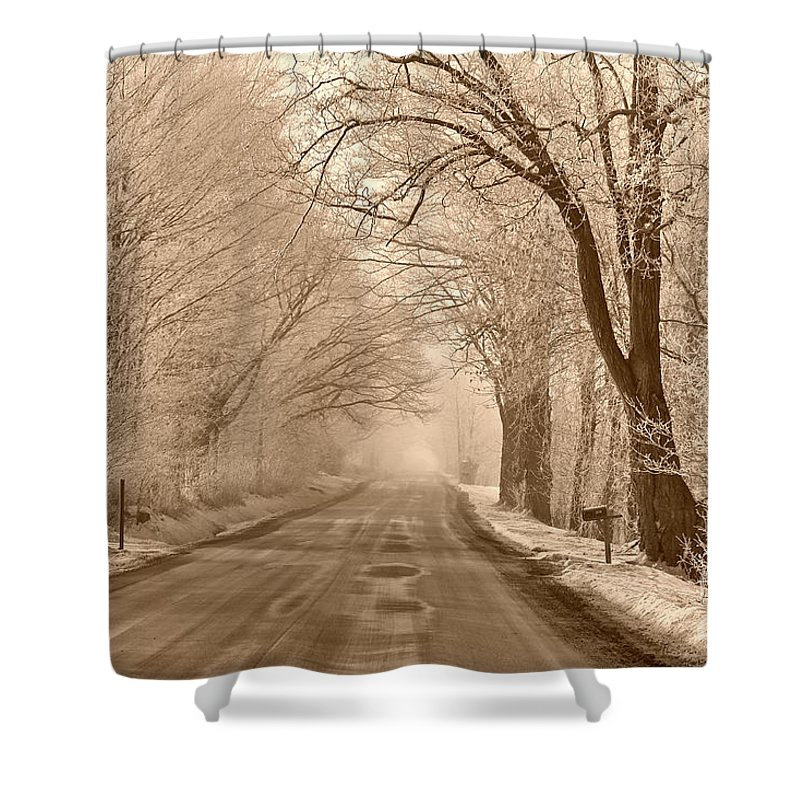 Winter Shower Curtain featuring the photograph Morning Ice And Fog by Deborah Benoit