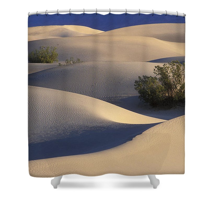 Death Valley National Park Shower Curtain featuring the photograph Morning In Death Valley Dunes by Sandra Bronstein