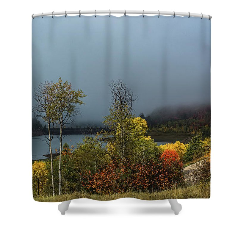 Leaves Shower Curtain featuring the photograph Morning Light And Fog by Yeates Photography
