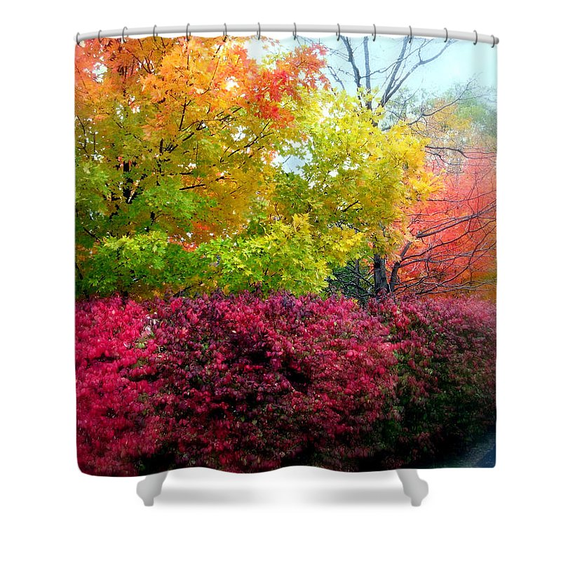 Nature Shower Curtain featuring the photograph Morning Mist by Jessica Jenney
