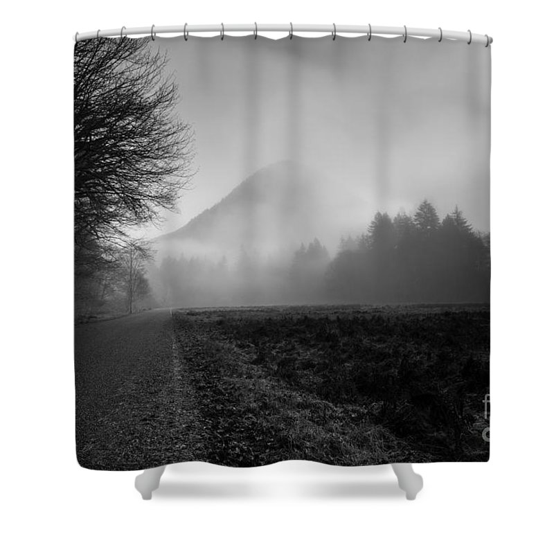 Olympic National Park Shower Curtain featuring the photograph Morning Scene In Olympic National Park by Arndt Hufenbach