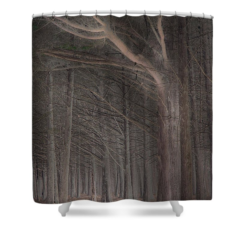 Landscapes Shower Curtain featuring the photograph Moss Beach Trees by Karen W Meyer