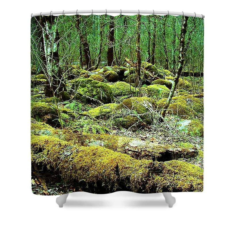 Trees Shower Curtain featuring the photograph Moss Consuming The Forest by Diana Dearen