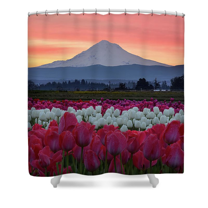 Mark Whitt Shower Curtain featuring the photograph Mount Hood Sunrise With Tulips by Mark Whitt