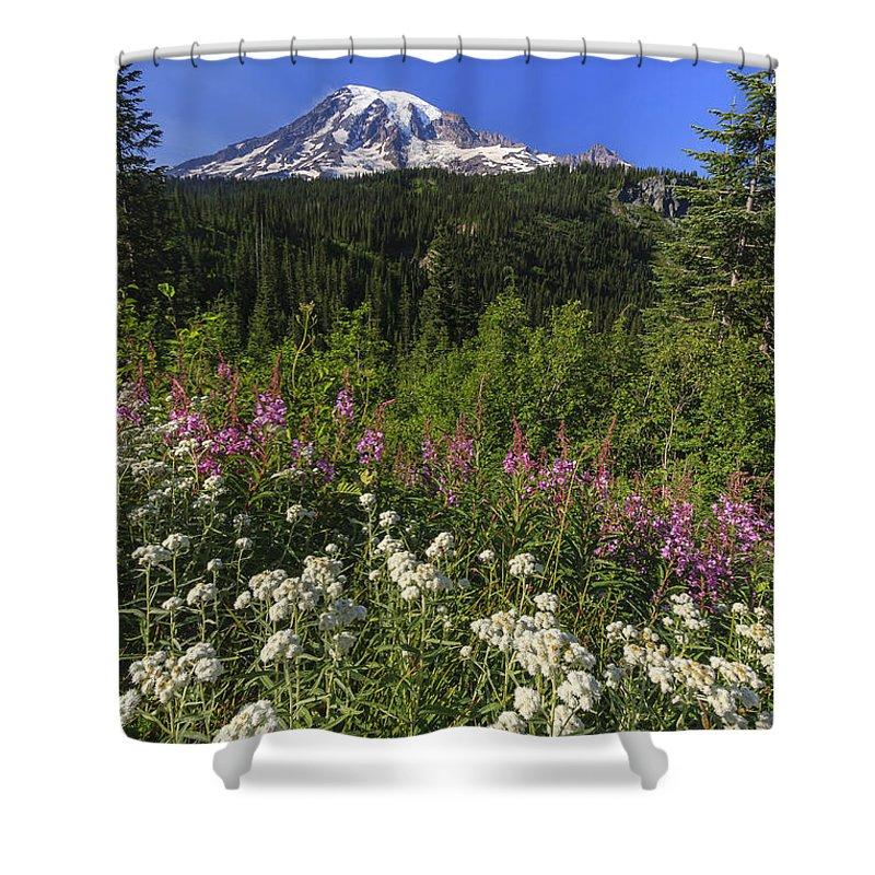 3scape Shower Curtain featuring the photograph Mount Rainier by Adam Romanowicz