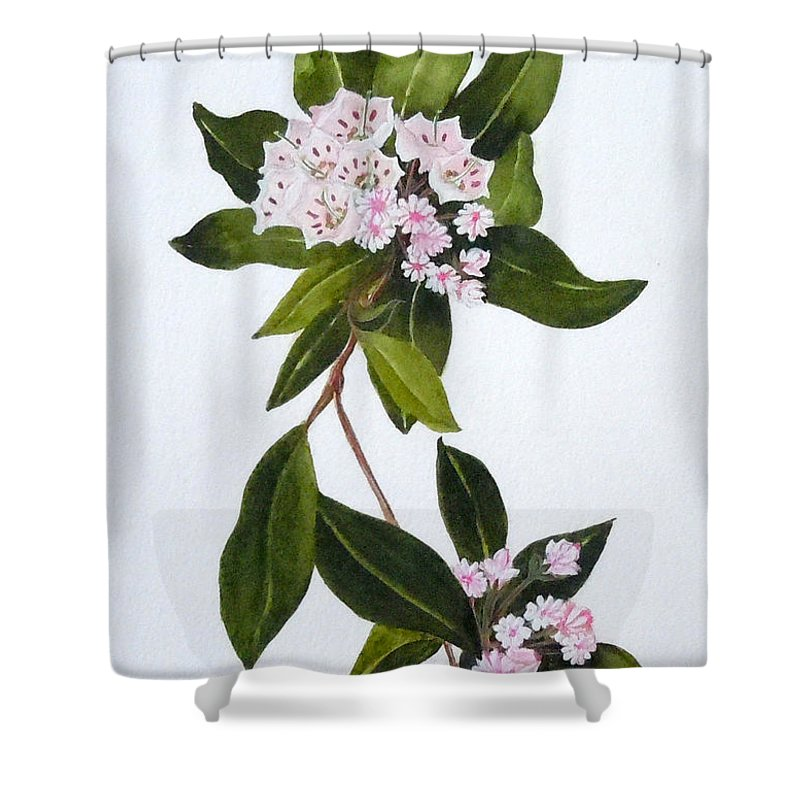 Mountain Laurel Shower Curtain featuring the painting Mountain Laurel by Jean Blackmer