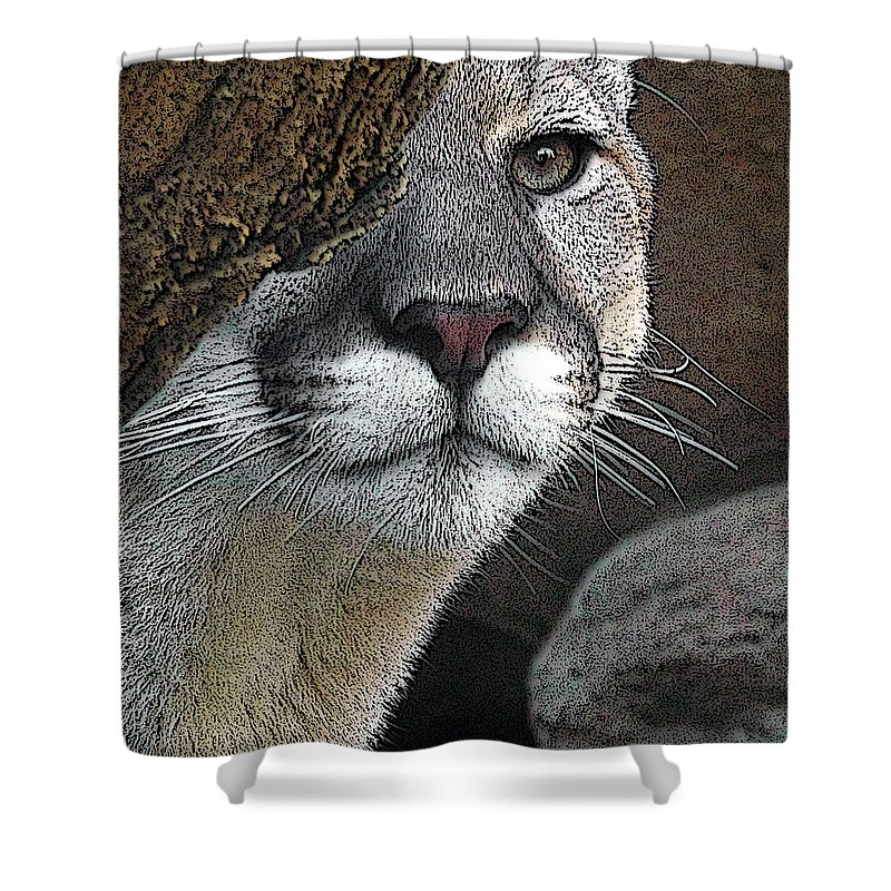 Big Cats Shower Curtain featuring the photograph Mountain Lion by Ernie Echols