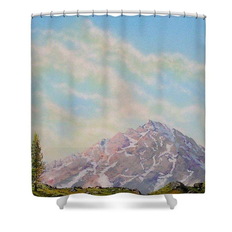 Wildflowers Shower Curtain featuring the painting Mountain Majesty by Frank Wilson