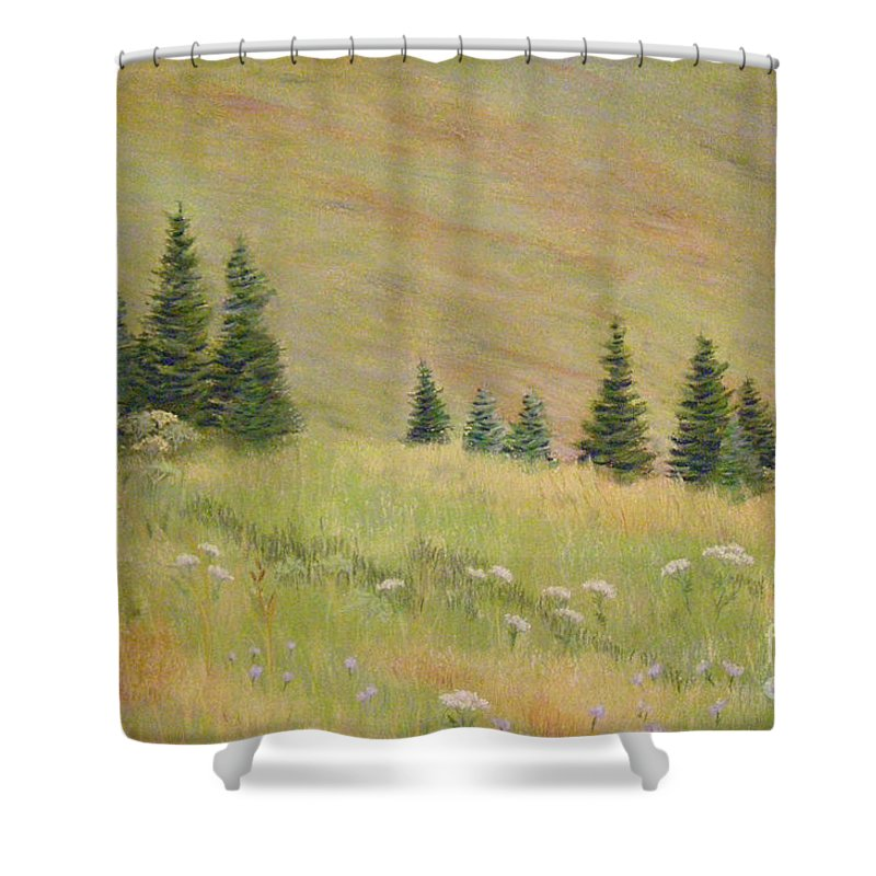 Landscape Shower Curtain featuring the painting Mountain Meadow by Lynn Quinn