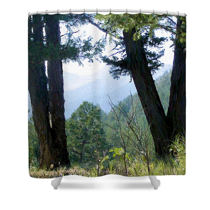 Digital Painting Shower Curtain featuring the painting Mountain View by Susan Kinney