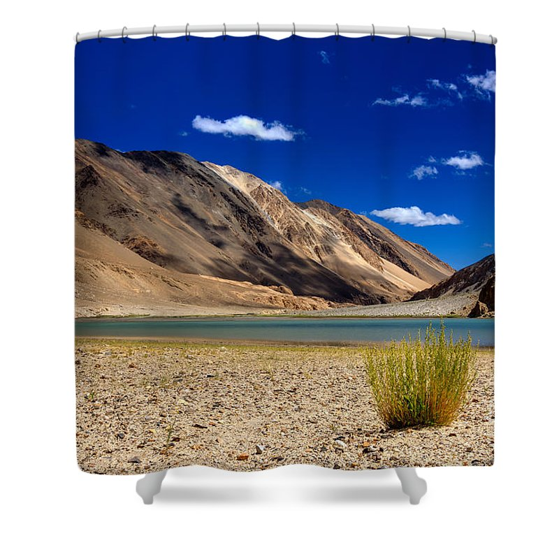 Lake Shower Curtain featuring the photograph Mountains And Green Vegetation Chagor Tso - Lake Leh Ladakh Jammu Kashmir India by Rudra Narayan Mitra