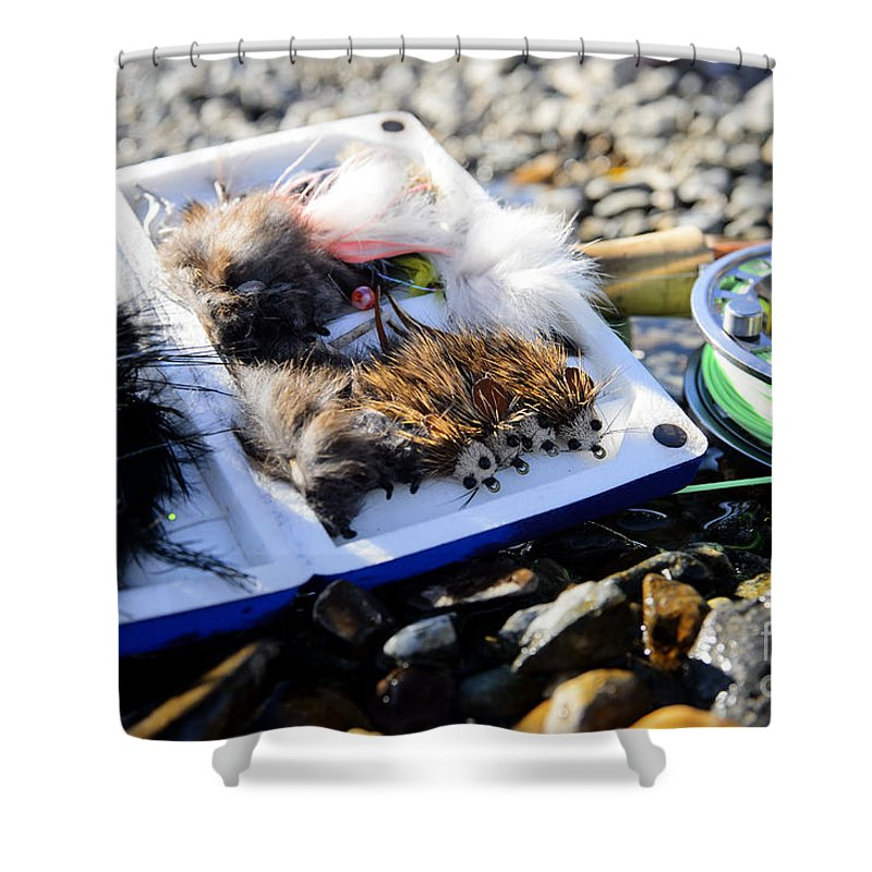 Mice Shower Curtain featuring the photograph Mousing by Chip Laughton