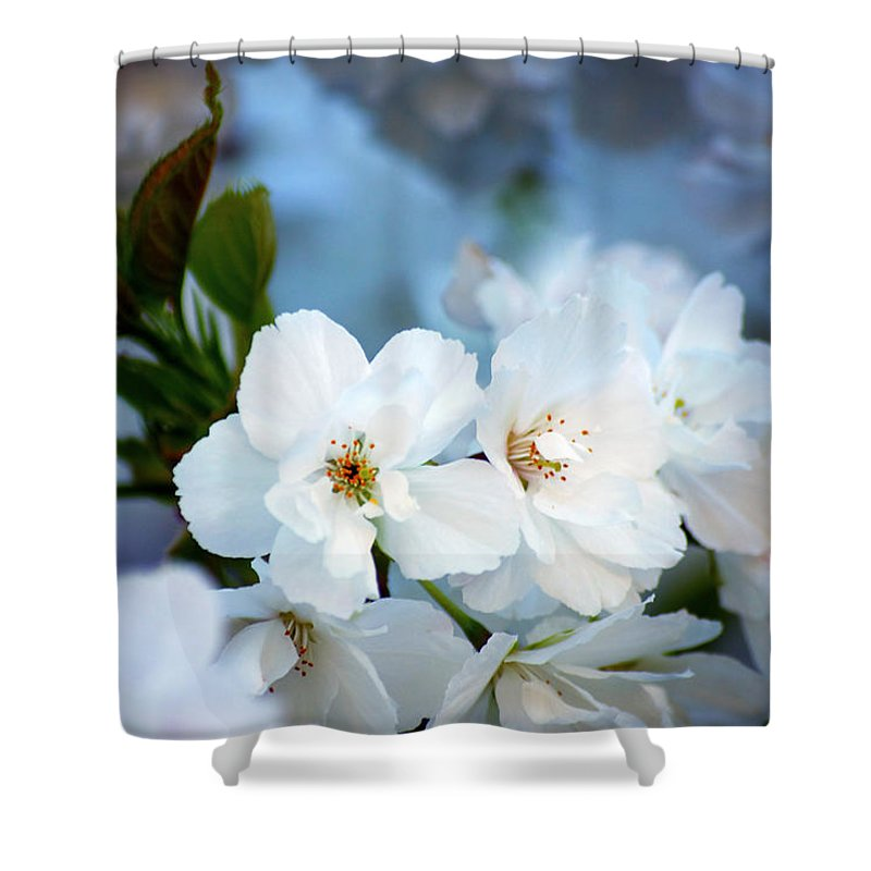 Nature Shower Curtain featuring the photograph Mt. Fuji Cherry Blossoms by Emerita Wheeling