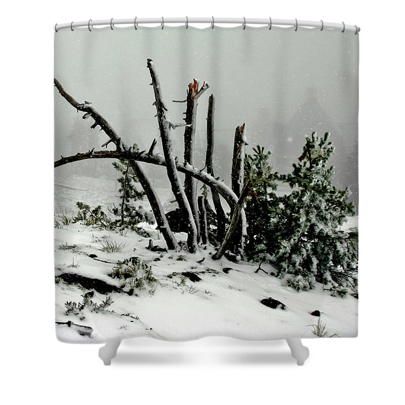 Snow Shower Curtain featuring the photograph Mt Hood Snow by Albert Seger