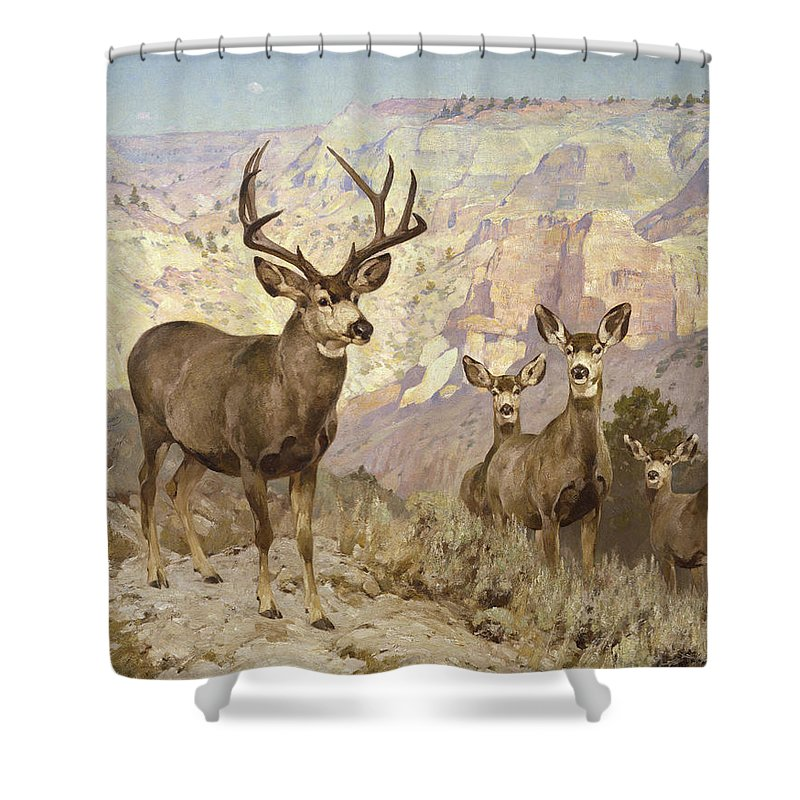 Mule Deer Shower Curtain featuring the painting Mule Deer In The Badlands, Dawson County, Montana by Rungius Carl