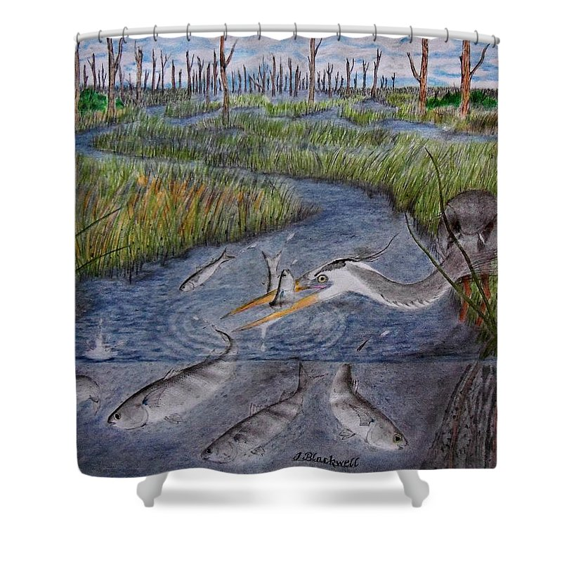 Fishing Shower Curtain featuring the drawing Mullet Creek by Jason Blackwell