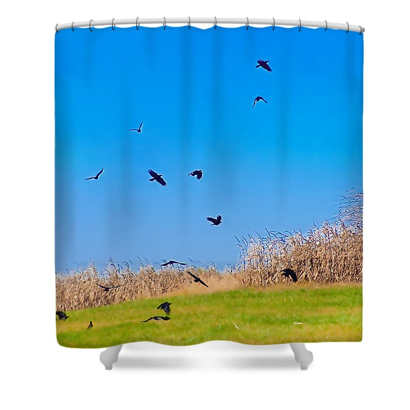 Crows Shower Curtain featuring the photograph Murder Of Crows by Bill Cannon