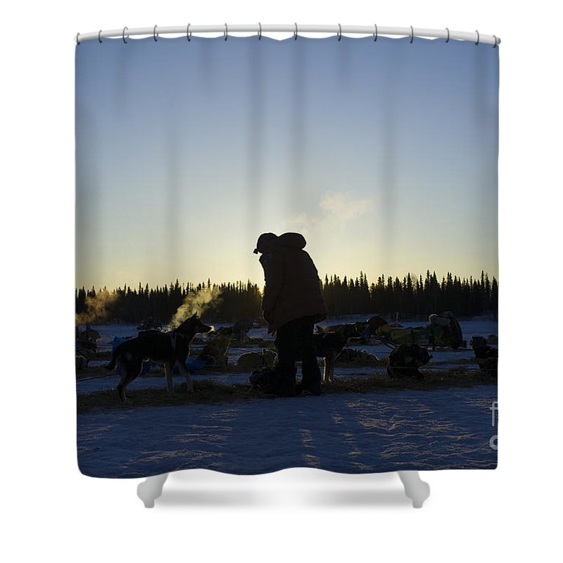 Sunrise Sunset Mushers Sled Dogs Silhouette Cold Winter Iditarod Shower Curtain featuring the photograph Mushers At Sunrise by Chip Laughton