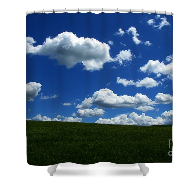 Nature Shower Curtain featuring the photograph Music For Your Eyes by Janice Westerberg