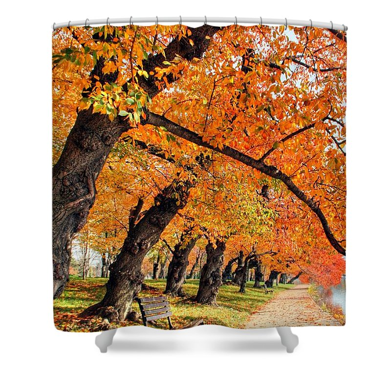 Autumn Shower Curtain featuring the photograph Mute Appeal by Mitch Cat