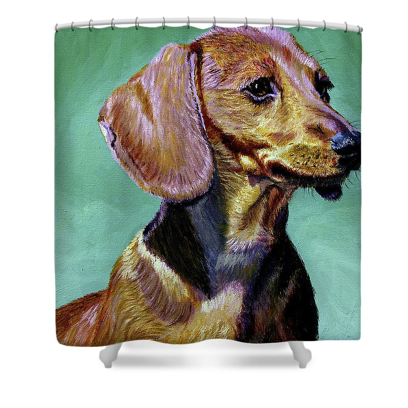 Daschund Shower Curtain featuring the painting My Daschund by Stan Hamilton