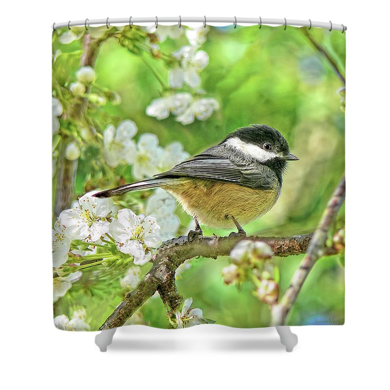 Chickadee Shower Curtain featuring the photograph My Little Chickadee In The Cherry Tree by Jennie Marie Schell