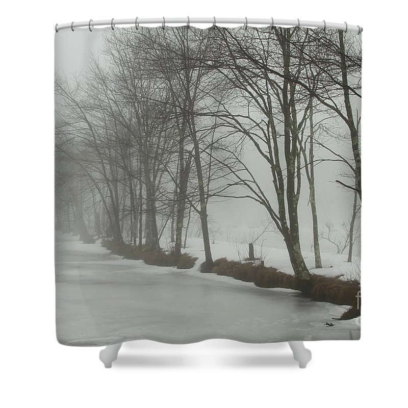 Winter Shower Curtain featuring the photograph Mysterious Winter by Karol Livote